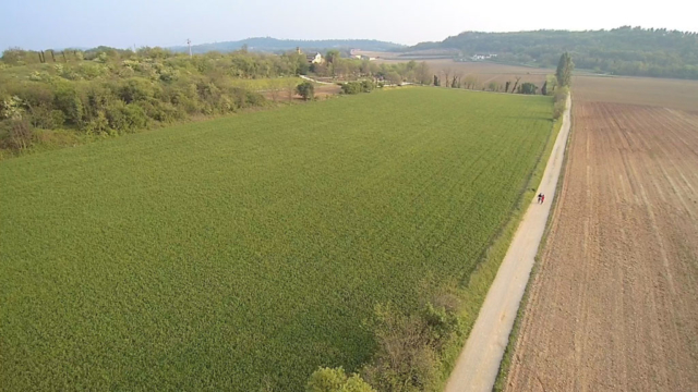 riprese aeree - fotografia con drone