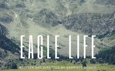 FILM LOW BUDGET